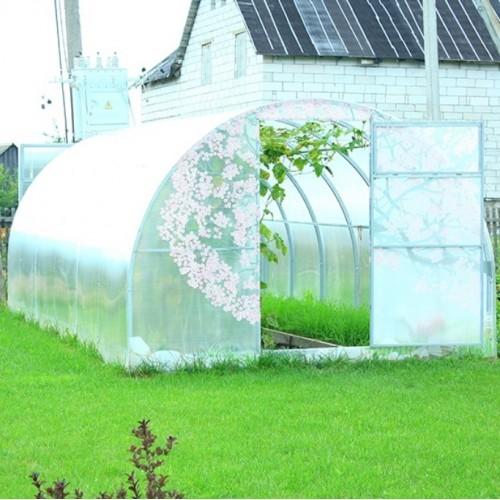 Siltumnīca-Zaļais dārzs 10 m